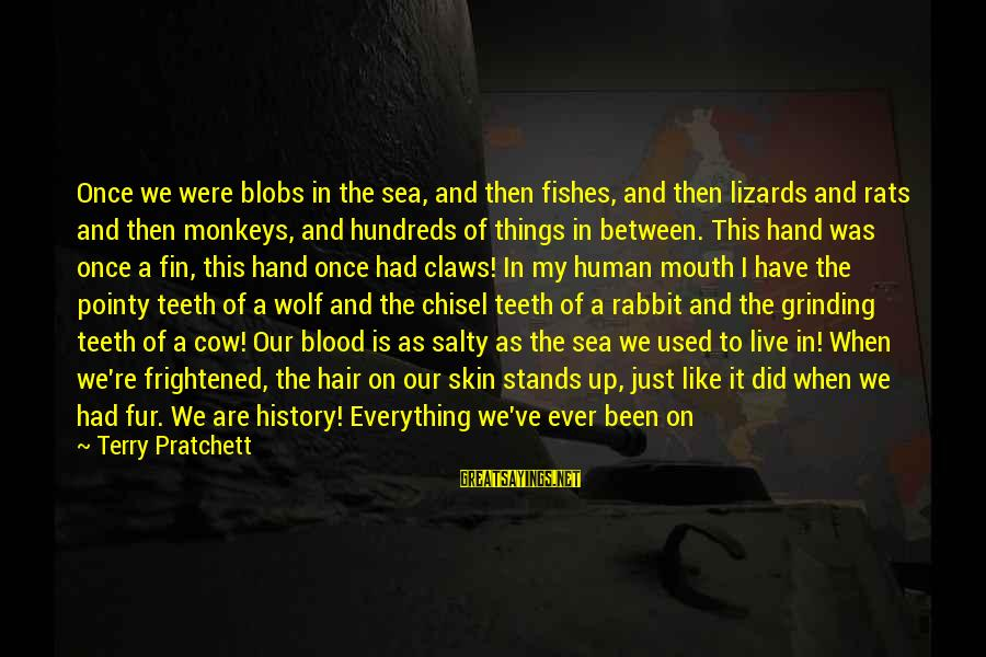 When We Met Sayings By Terry Pratchett: Once we were blobs in the sea, and then fishes, and then lizards and rats