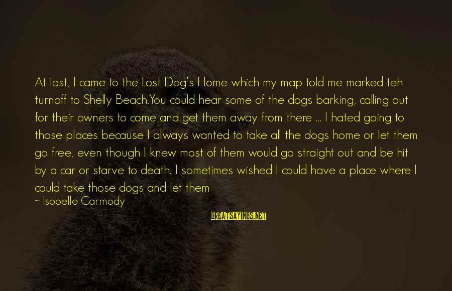 Where You Have Been Sayings By Isobelle Carmody: At last, I came to the Lost Dog's Home which my map told me marked
