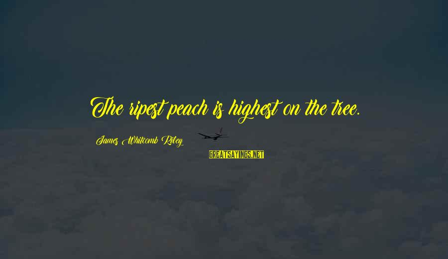 Whitcomb Riley Sayings By James Whitcomb Riley: The ripest peach is highest on the tree.