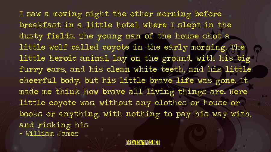 White Wolf Sayings By William James: I saw a moving sight the other morning before breakfast in a little hotel where