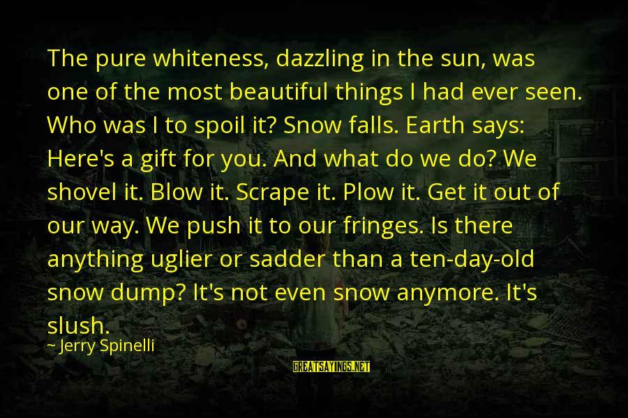 Who Says You're Not Beautiful Sayings By Jerry Spinelli: The pure whiteness, dazzling in the sun, was one of the most beautiful things I