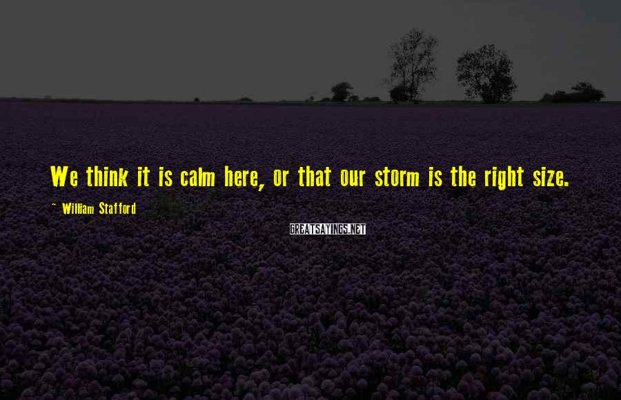 William Stafford Sayings: We think it is calm here, or that our storm is the right size.