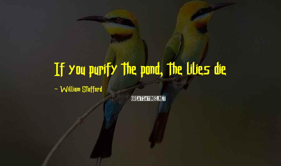 William Stafford Sayings: If you purify the pond, the lilies die