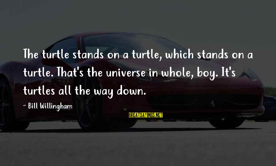 Willingham Sayings By Bill Willingham: The turtle stands on a turtle, which stands on a turtle. That's the universe in