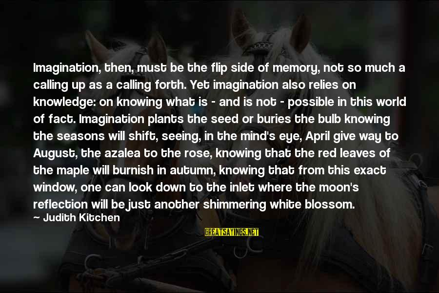 Window Reflection Sayings By Judith Kitchen: Imagination, then, must be the flip side of memory, not so much a calling up