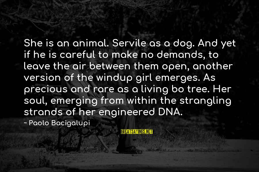 Windup Girl Sayings By Paolo Bacigalupi: She is an animal. Servile as a dog. And yet if he is careful to