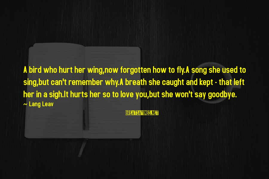 Wings To Fly Sayings By Lang Leav: A bird who hurt her wing,now forgotten how to fly.A song she used to sing,but