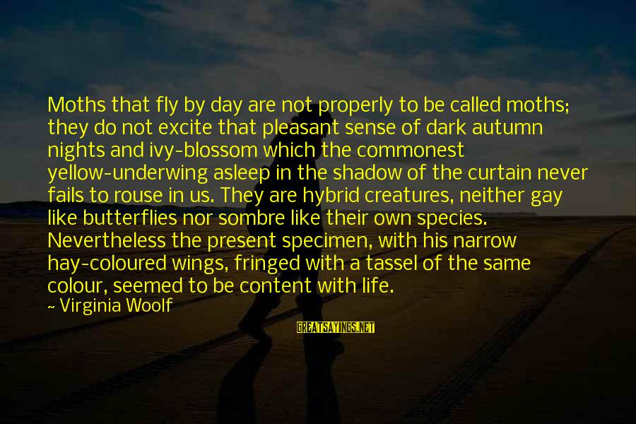 Wings To Fly Sayings By Virginia Woolf: Moths that fly by day are not properly to be called moths; they do not