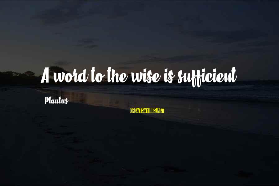 Wise 4 Word Sayings By Plautus: A word to the wise is sufficient