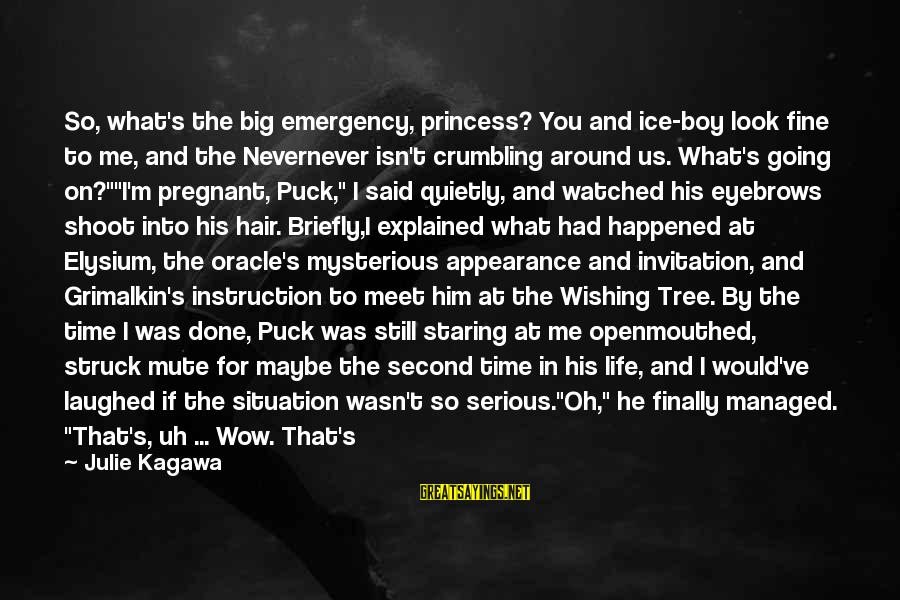 Wishing For More Time Sayings By Julie Kagawa: So, what's the big emergency, princess? You and ice-boy look fine to me, and the