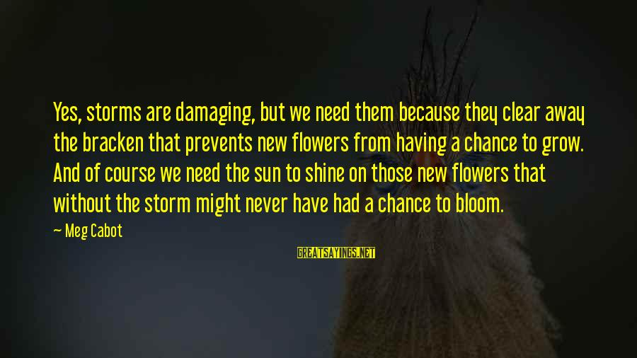 Without Sun Sayings By Meg Cabot: Yes, storms are damaging, but we need them because they clear away the bracken that