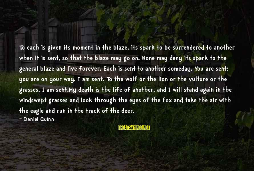 Wolf And Eagle Sayings By Daniel Quinn: To each is given its moment in the blaze, its spark to be surrendered to