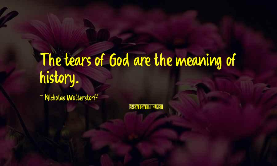Wolterstorff Sayings By Nicholas Wolterstorff: The tears of God are the meaning of history.
