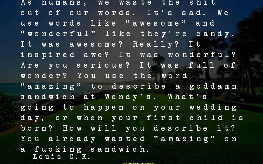 Words To Describe You Sayings By Louis C.K.: As humans, we waste the shit out of our words. It's sad. We use words