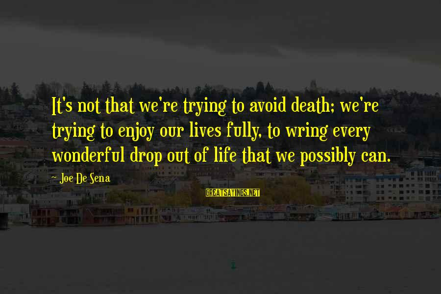 Wring Sayings By Joe De Sena: It's not that we're trying to avoid death; we're trying to enjoy our lives fully,