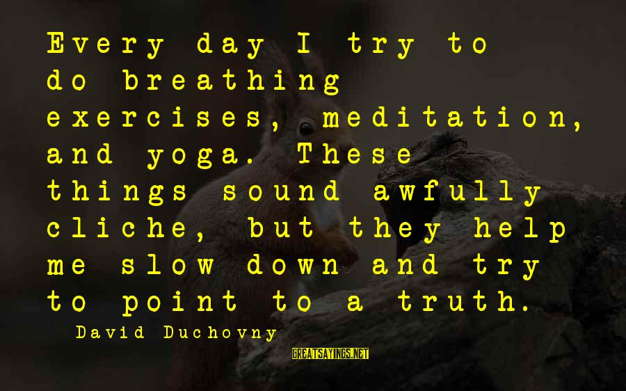 Yoga Meditation Sayings By David Duchovny: Every day I try to do breathing exercises, meditation, and yoga. These things sound awfully