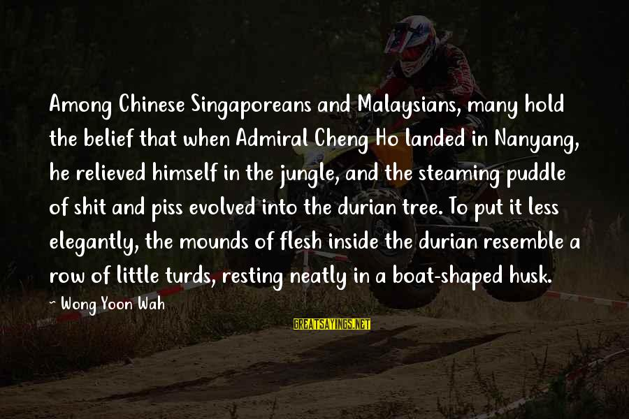 Yoon Sayings By Wong Yoon Wah: Among Chinese Singaporeans and Malaysians, many hold the belief that when Admiral Cheng Ho landed