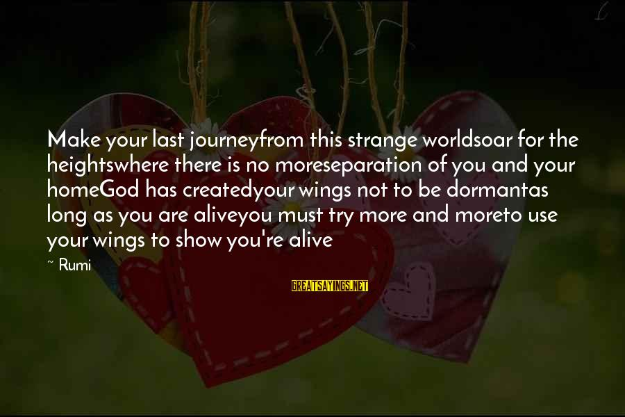 You And God Sayings By Rumi: Make your last journeyfrom this strange worldsoar for the heightswhere there is no moreseparation of