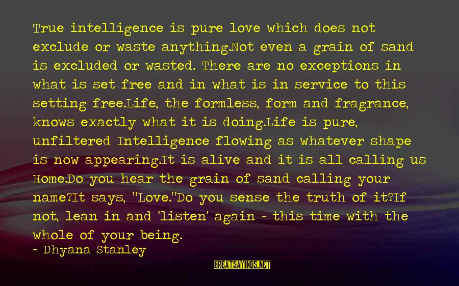 You Are Set Free Sayings By Dhyana Stanley: True intelligence is pure love which does not exclude or waste anything.Not even a grain