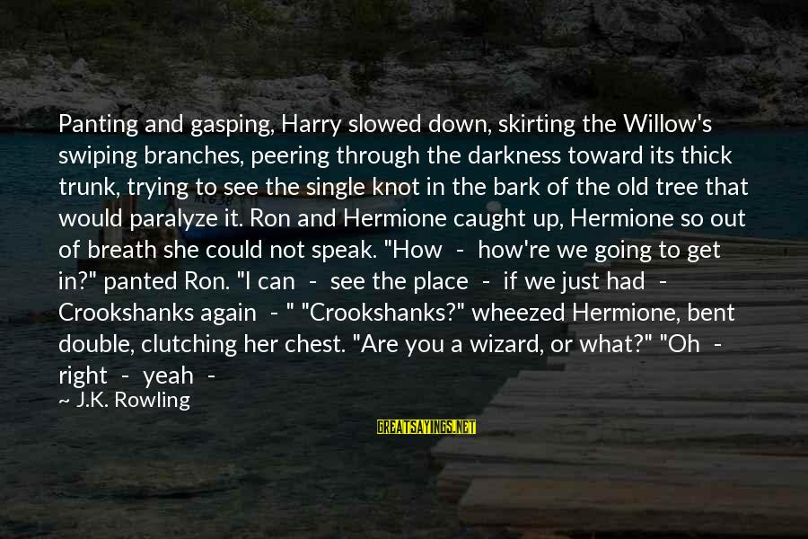 You Are What You Speak Sayings By J.K. Rowling: Panting and gasping, Harry slowed down, skirting the Willow's swiping branches, peering through the darkness