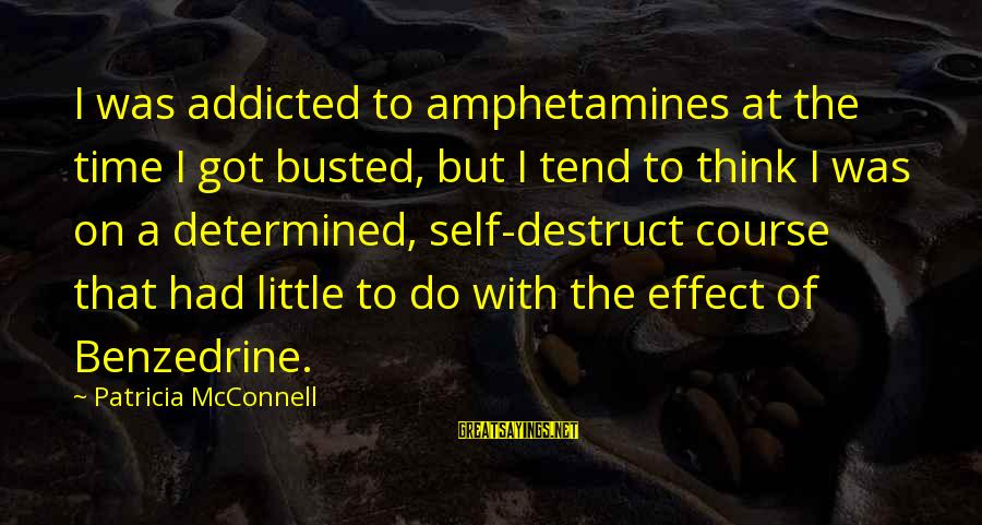 You Got Busted Sayings By Patricia McConnell: I was addicted to amphetamines at the time I got busted, but I tend to