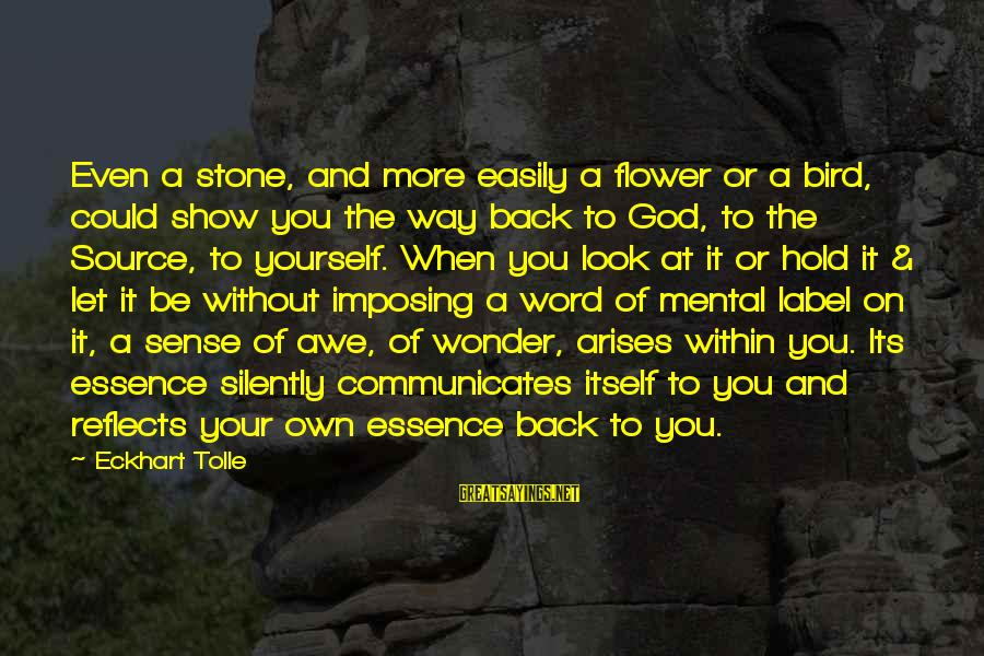 You Hold Yourself Back Sayings By Eckhart Tolle: Even a stone, and more easily a flower or a bird, could show you the