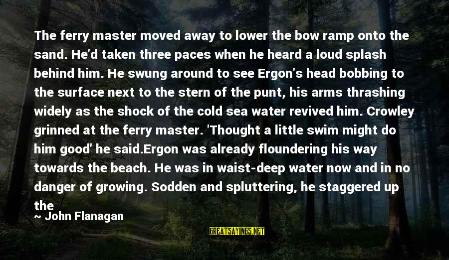 You Moved Away Sayings By John Flanagan: The ferry master moved away to lower the bow ramp onto the sand. He'd taken