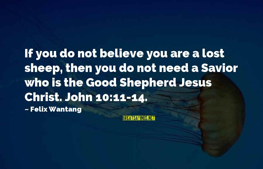 You Need Jesus Sayings By Felix Wantang: If you do not believe you are a lost sheep, then you do not need