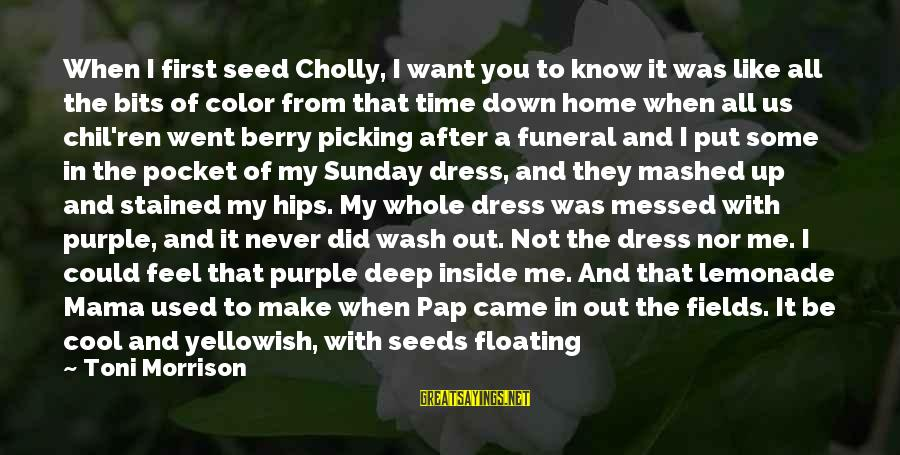 You Used To Want Me Sayings By Toni Morrison: When I first seed Cholly, I want you to know it was like all the