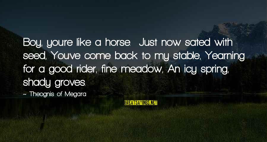 You're Shady Sayings By Theognis Of Megara: Boy, you're like a horse. Just now sated with seed, You've come back to my