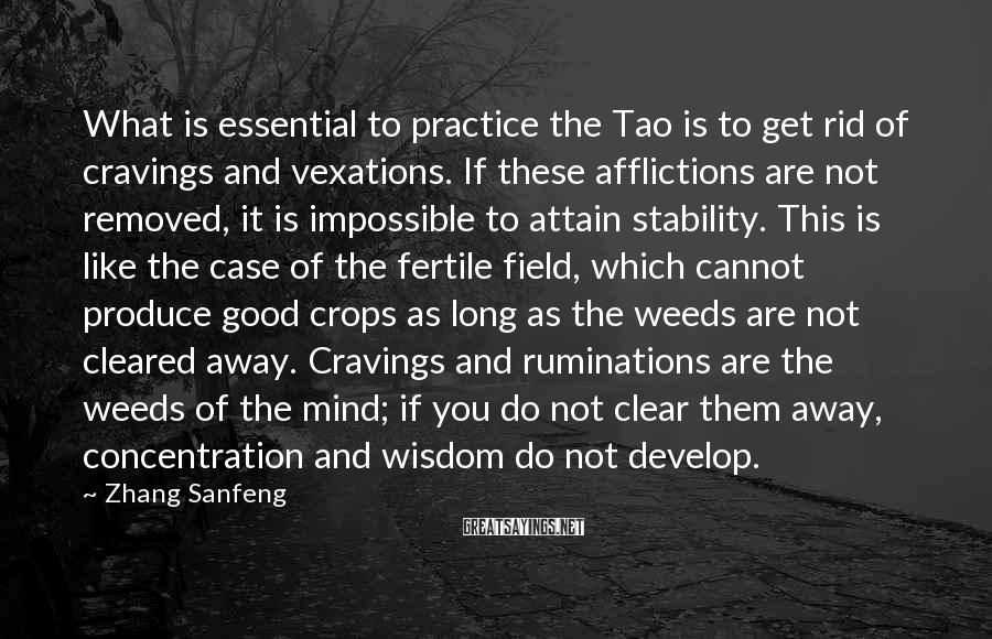 Zhang Sanfeng Sayings: What is essential to practice the Tao is to get rid of cravings and vexations.