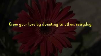Donate Life Inspirational Sayings