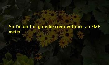 Up The Creek Sayings
