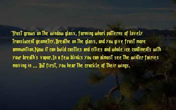 Window Wonderland Sayings