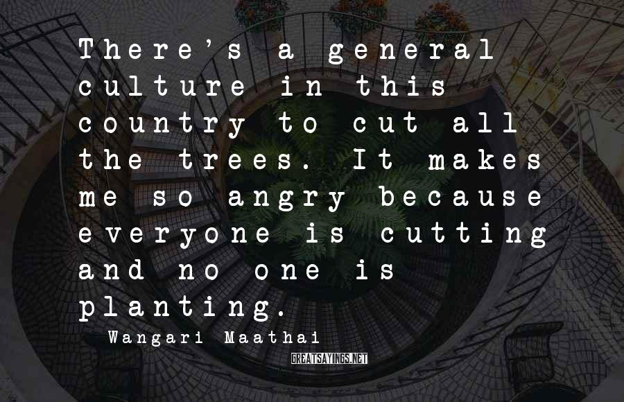 Wangari Maathai Sayings: There's A General Culture In This Country To Cut All The Trees. It Makes Me So Angry Because Everyone Is Cutting And No One Is Planting.