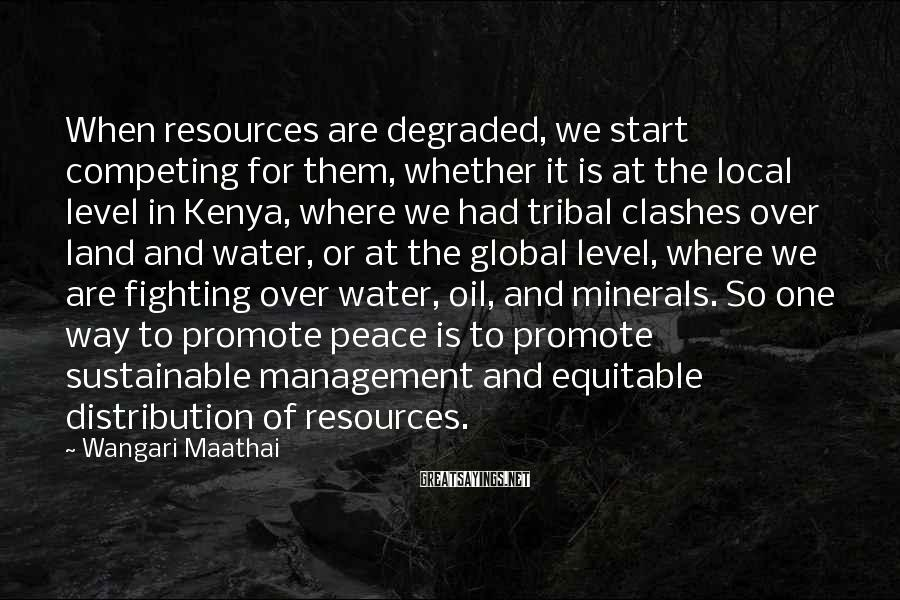 Wangari Maathai Sayings: When Resources Are Degraded, We Start Competing For Them, Whether It Is At The Local Level In Kenya, Where We Had Tribal Clashes Over Land And Water, Or At The Global Level, Where We Are Fighting Over Water, Oil, And Minerals. So One Way To Promote Peace Is To Promote Sustainable Management And Equitable Distribution Of Resources.